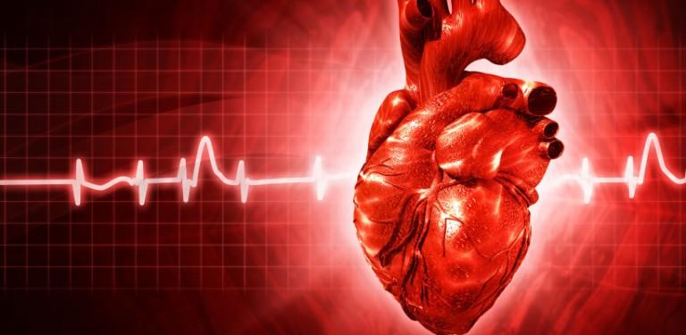 bone marrow heart disease